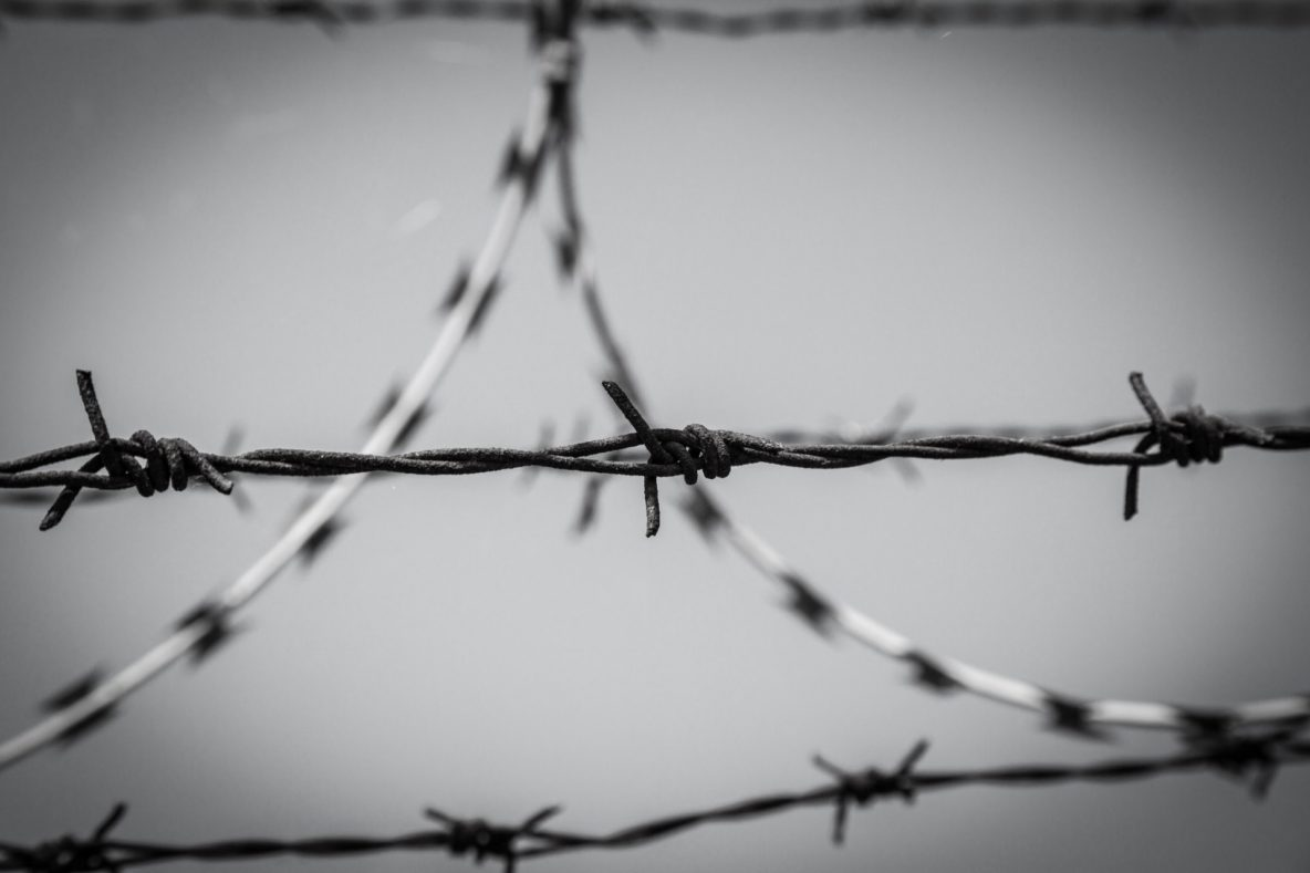 Black and white, close up photo of barbed wire